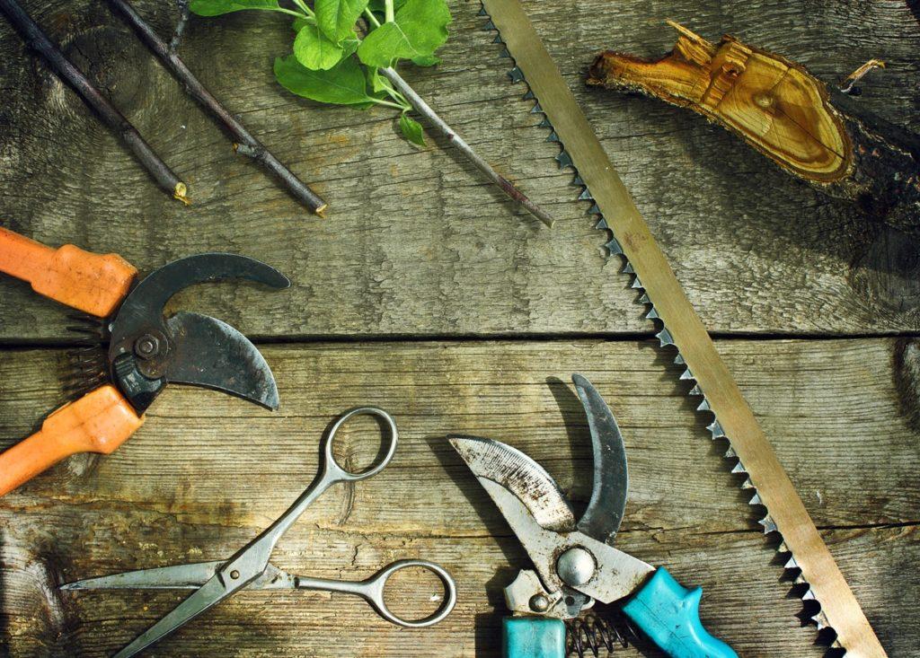 Инструменты для обрезки растений